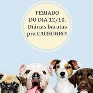 Vale das Primaveras – Preço bom pra cachorro!